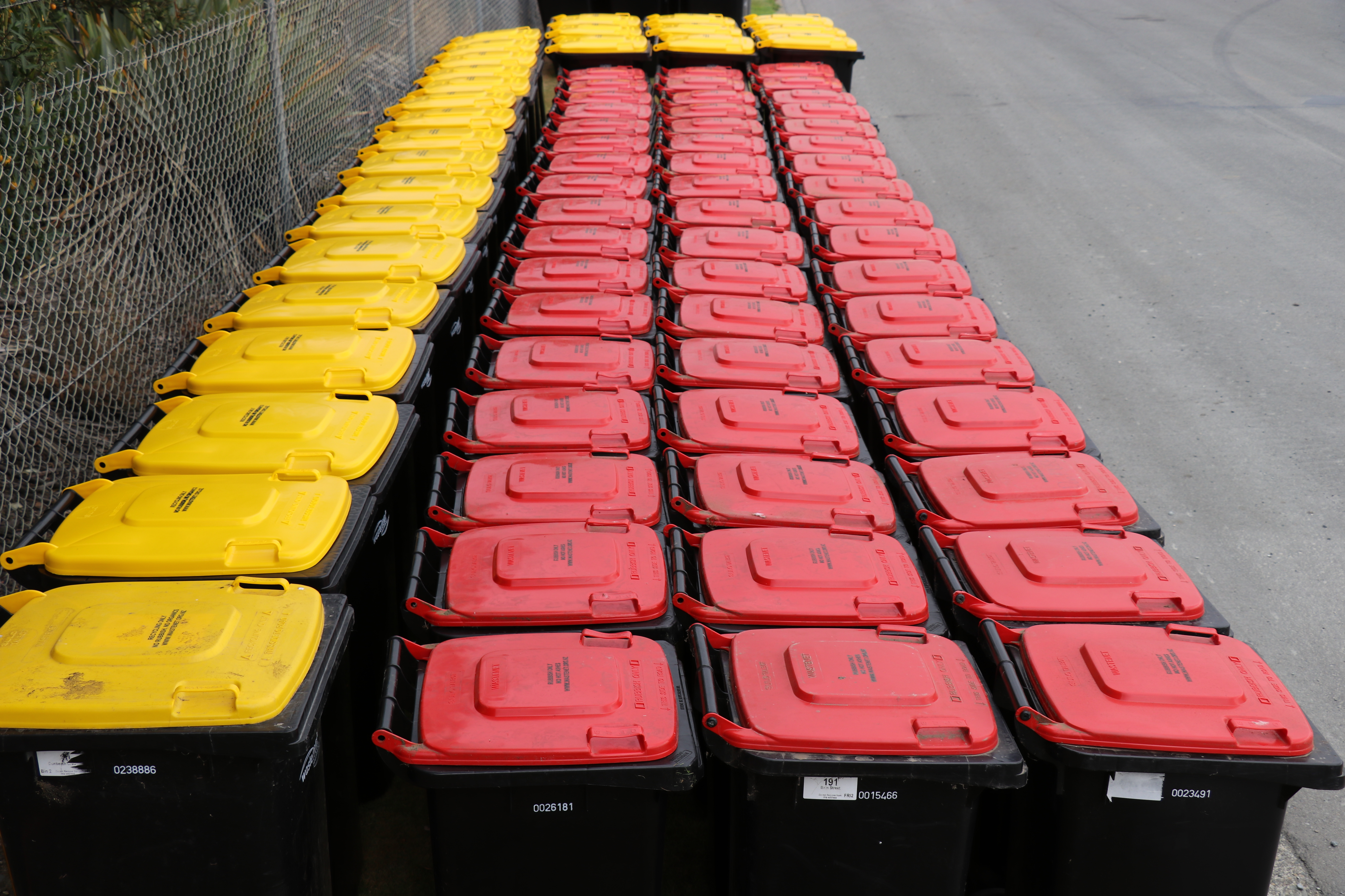 26 yellow recycling bins and 52 red rubbish bins grouped together